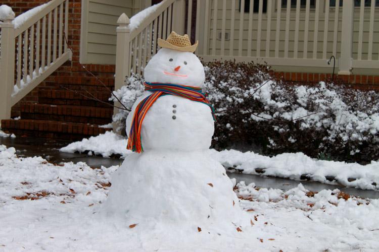 Pedro the Dominican Snowman