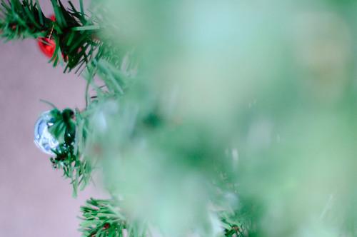 45/365 (Insert Filler Christmas Tree Shot Here)