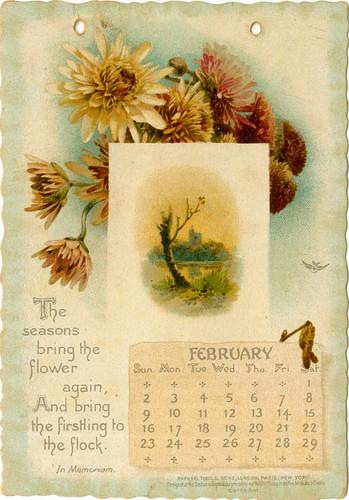 02 February
