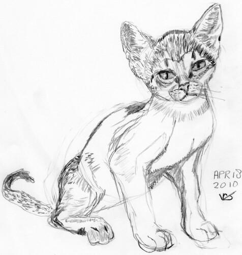 Cute kitten, drawn on April 18, 2010