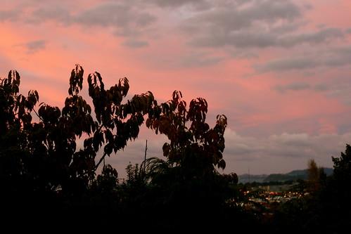 Tuesday: Dawn