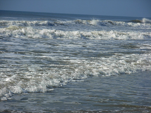 DSCN7351 Surf