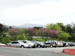 陽明山第二停車場