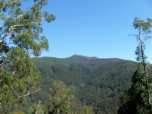 Mt. Buller From A Distance