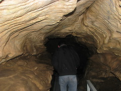 28 - Oregon Caves - 20100525