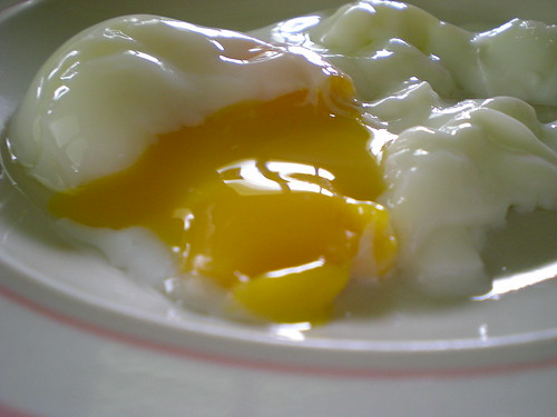 Kampung chicken egg 4
