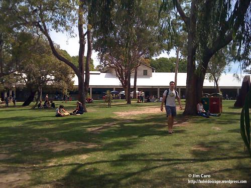 Aussies love their lawn