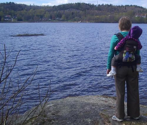 Picnic vid sjön