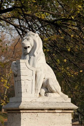 Dedicated Lion