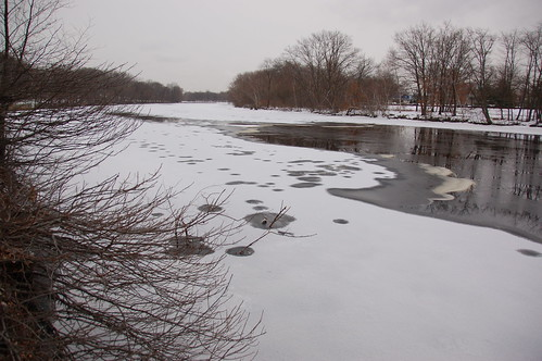 Charles River, 8 January 2010: Another fresh c...