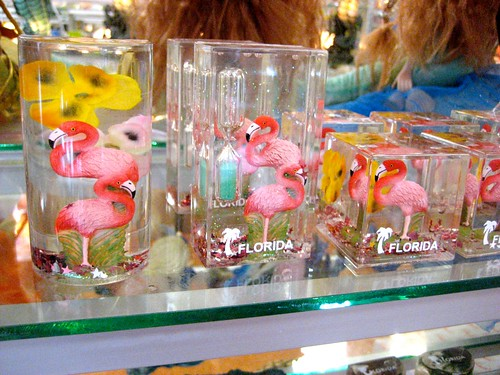 Florida Flamingos