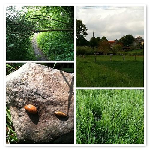 Geocaching in Dortelweil