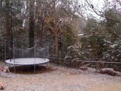 snow in our backyard