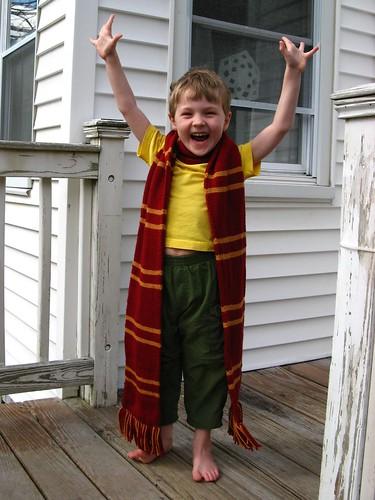9896 J models Harry Potter scarf