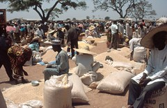 Selling cowpea in a market