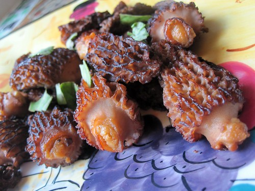 stuffed morels