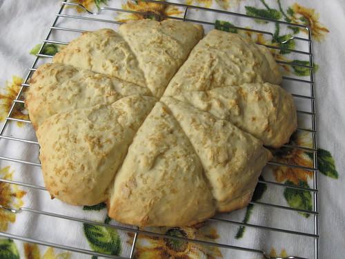 orange scones