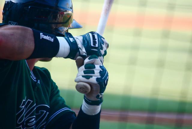 baseball: west tenn diamond jaxx @ carolina mudcats