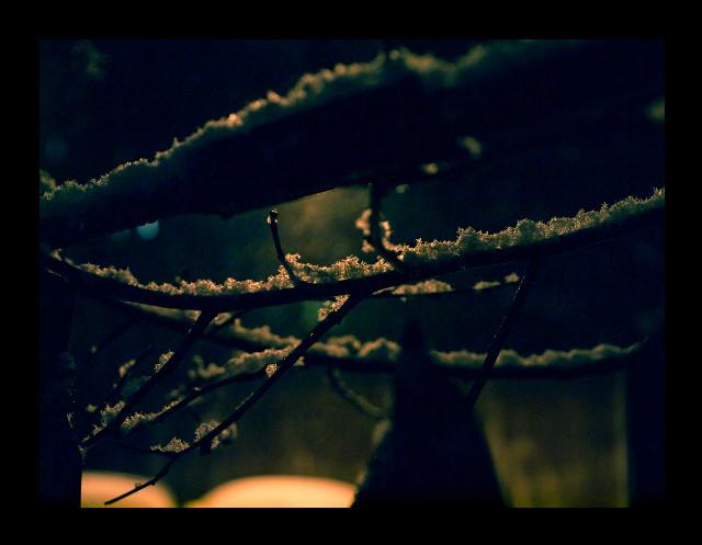 Ninsoare în noapte