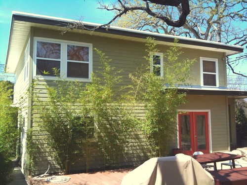 Our lovely Austin rental house