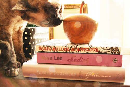 Books with a cat