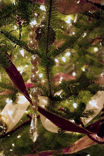 Christmas 2009_0037