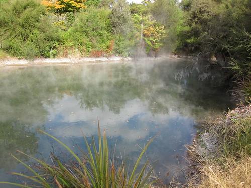 Roturua GeoThermal Park 1