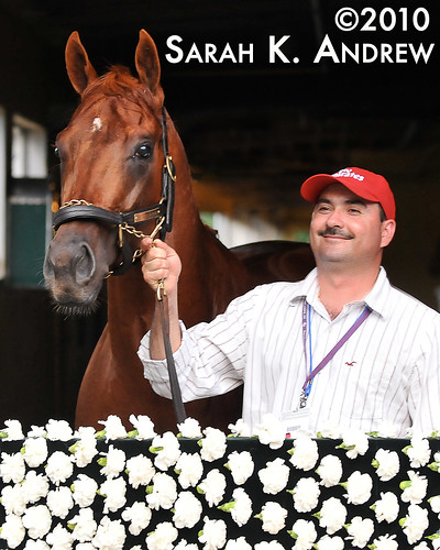 Drosselmeyer: 2010 Belmont Stakes Winner Posing in Front of his Blanket of Carnations