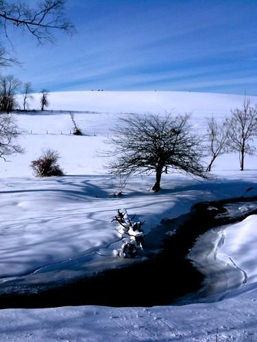 winter walk 12