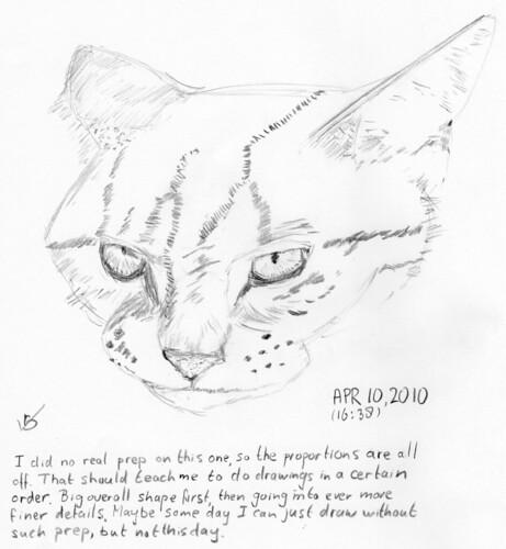 Rasheed, drawn on April 10, 2010