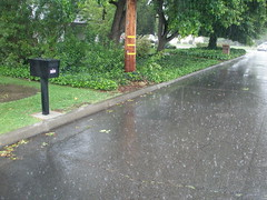 Caught in a deluge while walking to get a Big ...