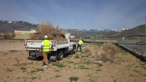 Freeway Bike Path Cleanup