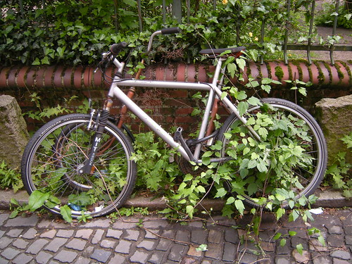 Überwachsene Fahrräder