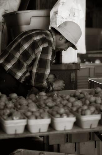 Lowertown Photo Walk - Farmer's Market 9