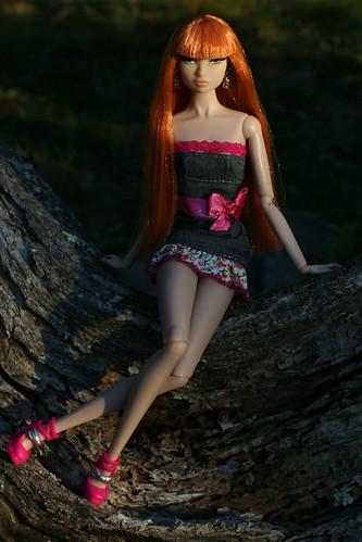 Sun Gilded Erin