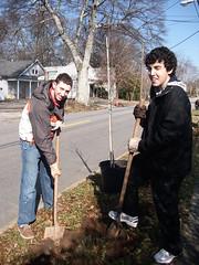 Tu B'Shevat Tree Planting