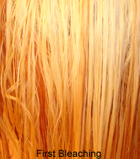 How To Get Orange Out Of Bleached Hair Krista Robyn Beauty Blog