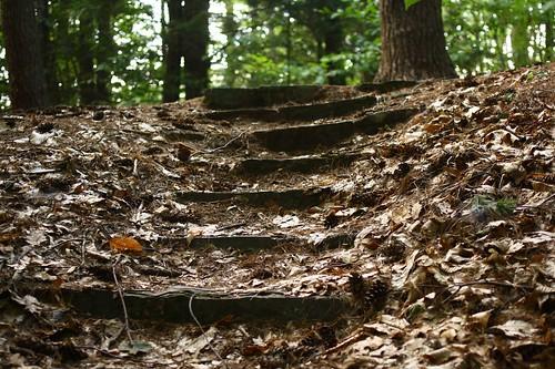 Bellamy Stairs