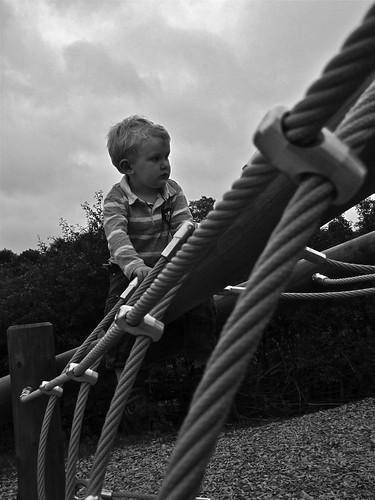 Wisley playground