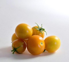 sun gold fresh organic cherry tomatoes