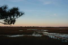 Early Morning Charleston Marsh