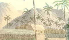 Farming in Ancient Guam