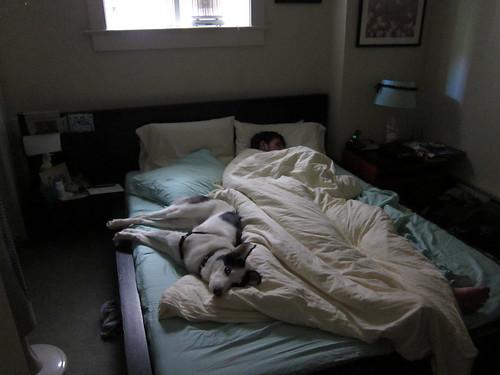 Handsome Sleep Club