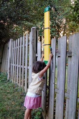 Backyard Safari Outfitters periscope!