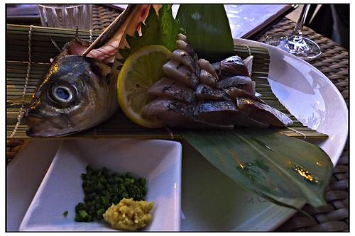 Horse Mackerel Latitudes at Mirai Sushi