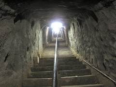 The Japanese Tunnel System