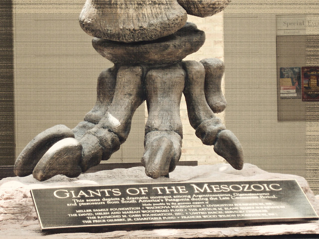 Giants of the Mesozoic