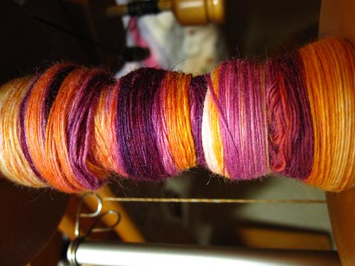 All Spun Up Polwarth - Goldfish Wearing a Tutu
