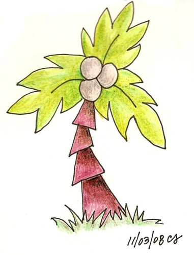 11-03-08-CoconutTree