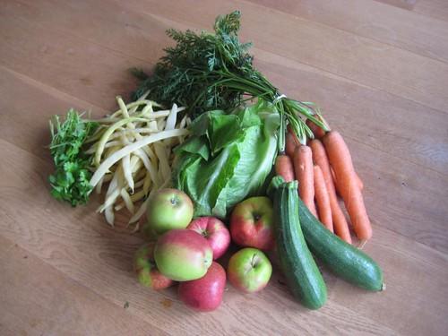 Amelis'Hof CSA vegetables week 33, 2010